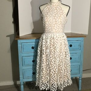 Liza Luxe by ModCloth lace overlay midi dress